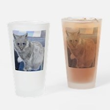 gray cat3 Drinking Glass
