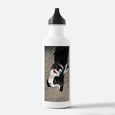 skunk1 Water Bottle