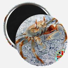 2-DGSMousepad-v1-GhostCrab.gif Magnet