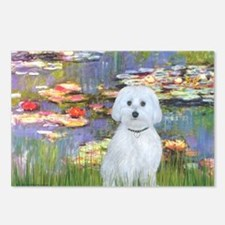 MP-Lilies 2 - Maltese (B) Postcards (Package of 8)