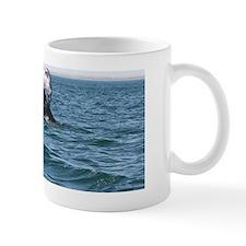 IMG_1217 Mug