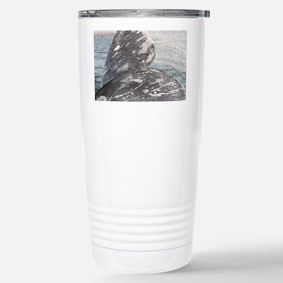 IMG_0167 Stainless Steel Travel Mug