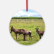 NoteCard-donkey.gif Round Ornament