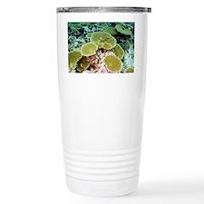 NoteCard-coral.gif Travel Mug