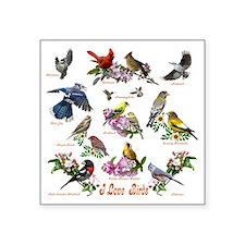 "12 X T birds copy Square Sticker 3"" x 3"""