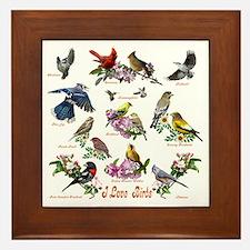 12 X T birds copy Framed Tile