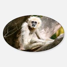 gibbon Sticker (Oval)