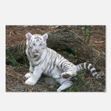 tiger2 Postcards (Package of 8)