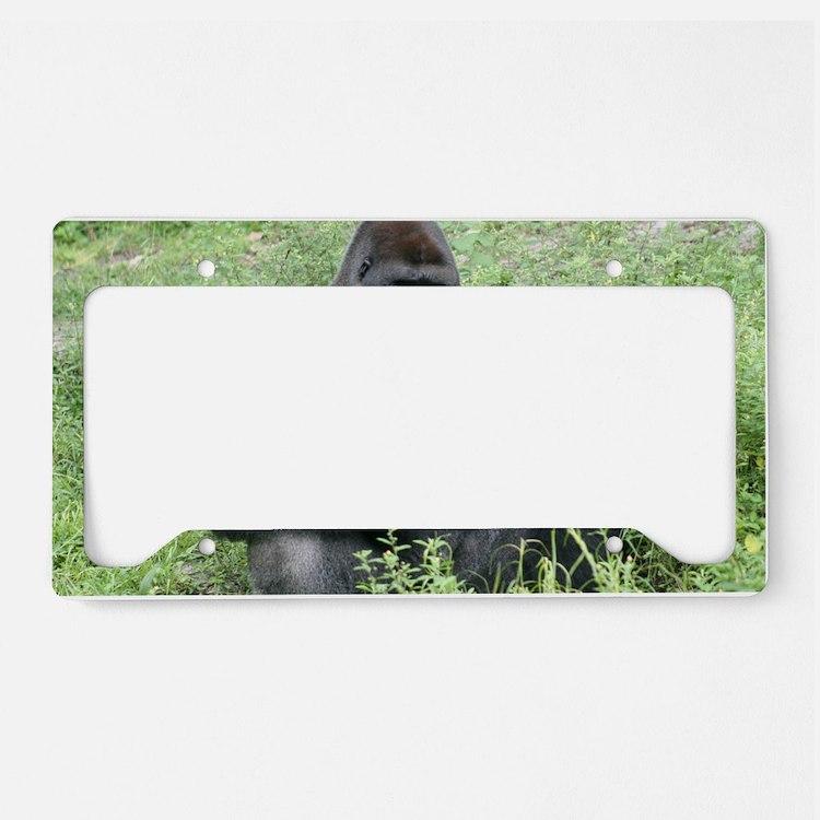 2 License Plate Holder