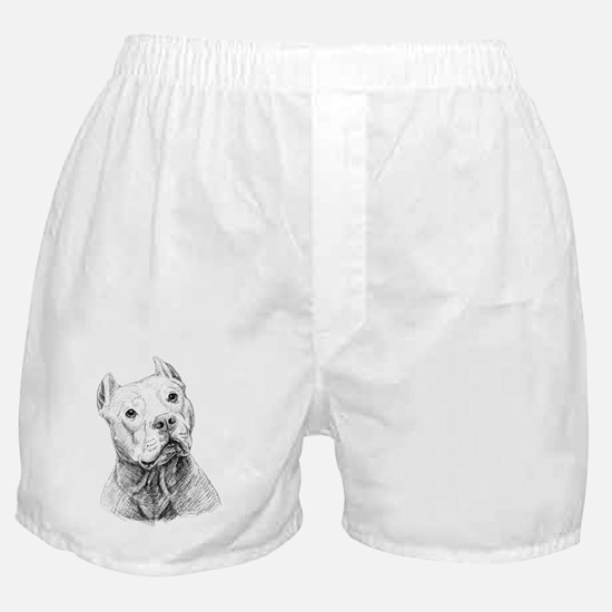 2-Doc Boxer Shorts
