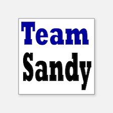 "team sand Square Sticker 3"" x 3"""