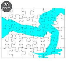 pushing_cyan Puzzle