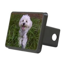 Trinket in the Grass Hitch Cover