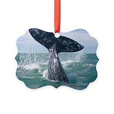 IMG_9024 Ornament