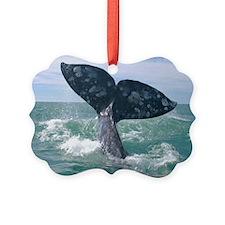 IMG_9025 Ornament