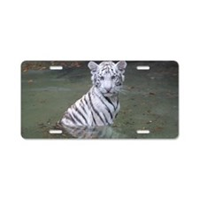 IMG_4854 Aluminum License Plate