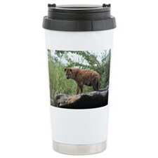 IMG_5413 Travel Mug