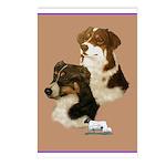 Australian Shepherd Pair Postcards (Package of 8)