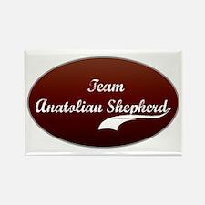 Team Anatolian Rectangle Magnet (10 pack)
