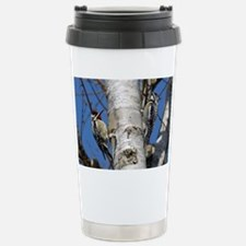 2-6x4_pcard 2 Stainless Steel Travel Mug