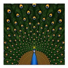 "Peacock_Pillow Square Car Magnet 3"" x 3"""