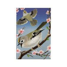 2-Goldcrest Rectangle Magnet