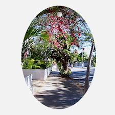 key west street 5x7 Oval Ornament