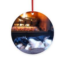 Cheyenne_fire Round Ornament