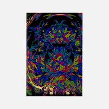 Kaleidoscope Rectangle Magnet