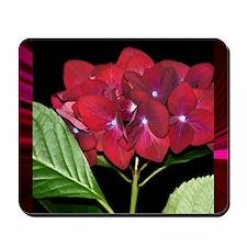 RedHydrangea_Pleats_PILLOW Mousepad