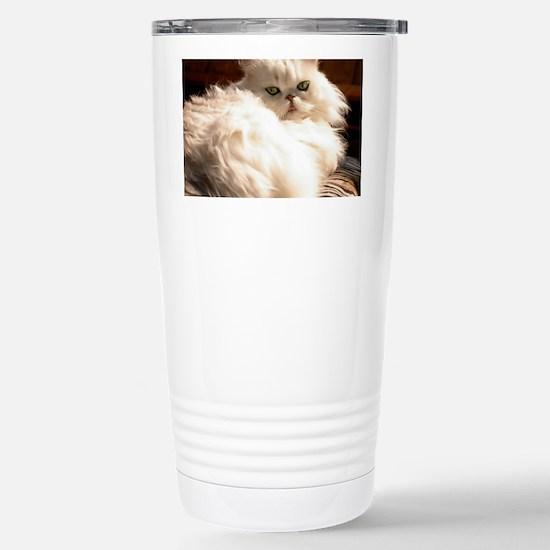 persianwht22 Stainless Steel Travel Mug