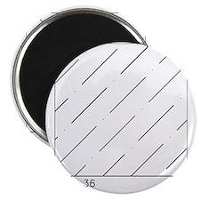 ANSI 36 Magnet