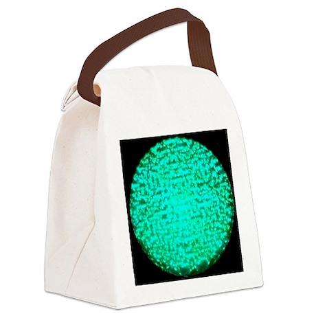 ART Green Light Canvas Lunch Bag