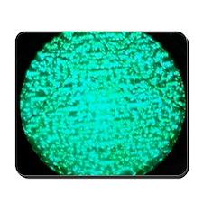 ART Green Light Mousepad