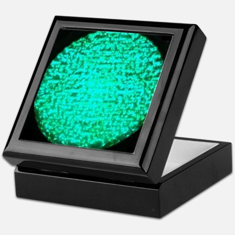 ART Green Light Keepsake Box