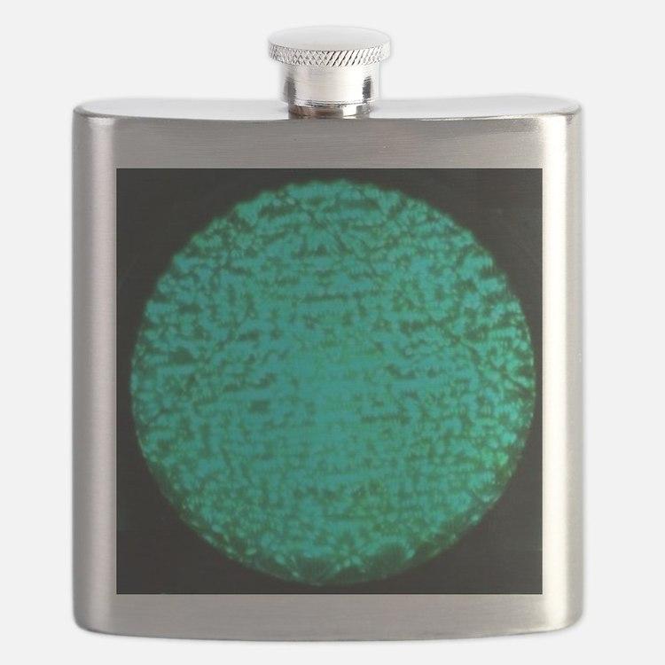 ART Green Light Flask