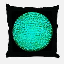 ART Green Light Throw Pillow