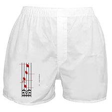 2-DSCH-2010-white-Cafepress-flattened Boxer Shorts