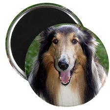 DogPillowPic Magnet