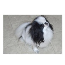 alljapanesechin Postcards (Package of 8)