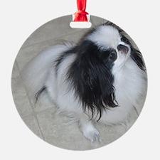 alljapanesechin Ornament