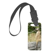 P5040252 Luggage Tag