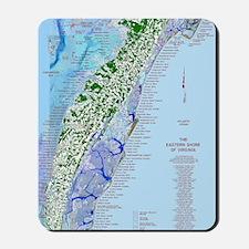 7002 Eastern Shore Map Mousepad