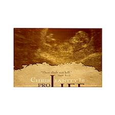 Bag_ProLife-Christianity Rectangle Magnet