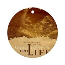 Bag_ProLife-Christianity Round Ornament