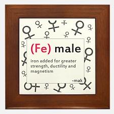 ladiesfront Framed Tile