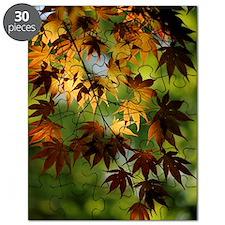 Japanese Garden Puzzle