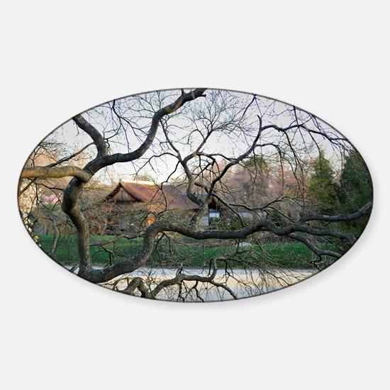 Through the Trees Sticker (Oval)