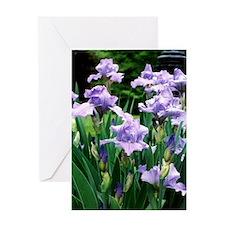 iris note card Greeting Card