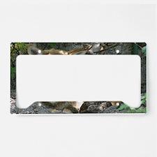 IMG_8206 License Plate Holder
